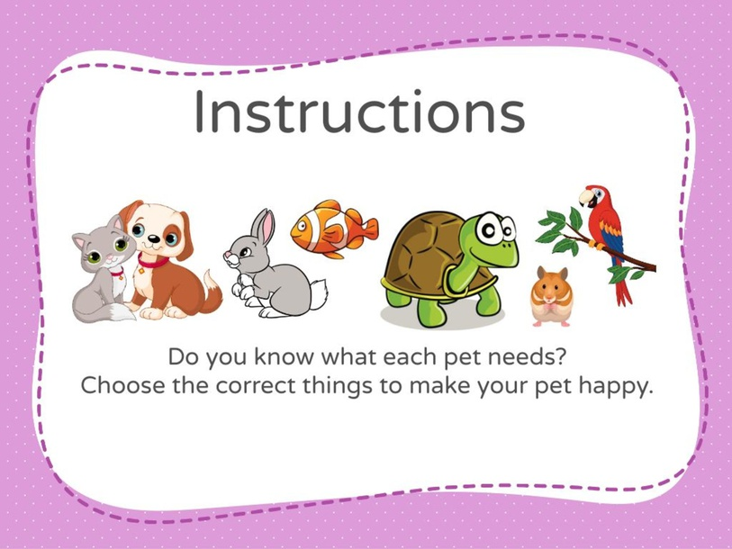 What Does My Pet Need? by Rachel Cheah