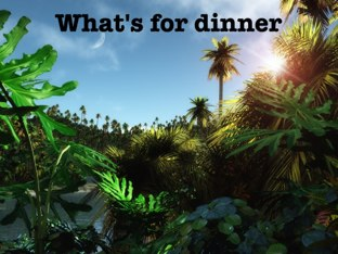 What's For Dinner by Ascension Kindergarten