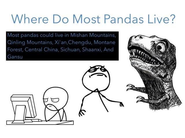 Where do most pandas live?? by Jane Miller _ Staff - FuquayVarinaE