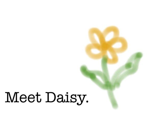 Where's Daisy? by Mary Leadbeater