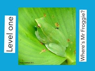 Where's Mr Froggie? by Mohammad isha