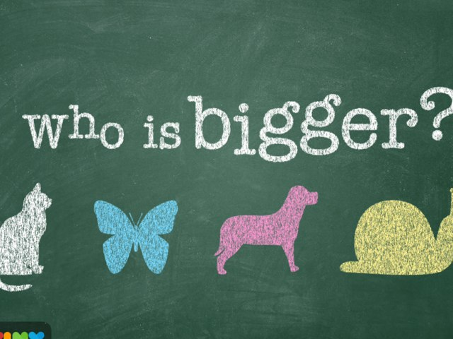 Who Is The Biggest by mcpake family