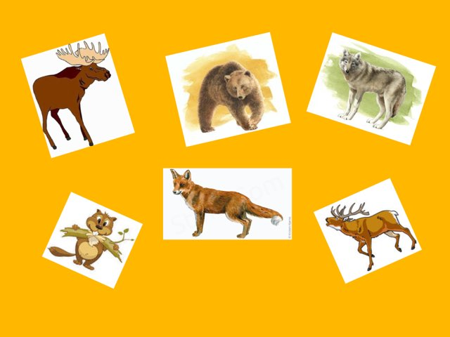 Wild Animals by Inga-Lill Gustavsson