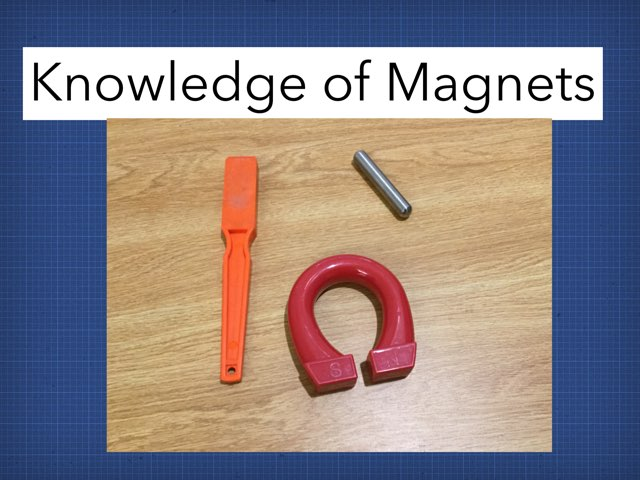 William's Magnet Game by Frances Chapin