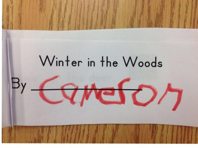 Winter In The Woods by Michelle Nelipowitz
