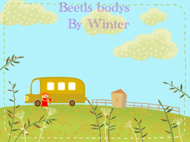 Winter ,s Beetles Project by Stephanie Olson
