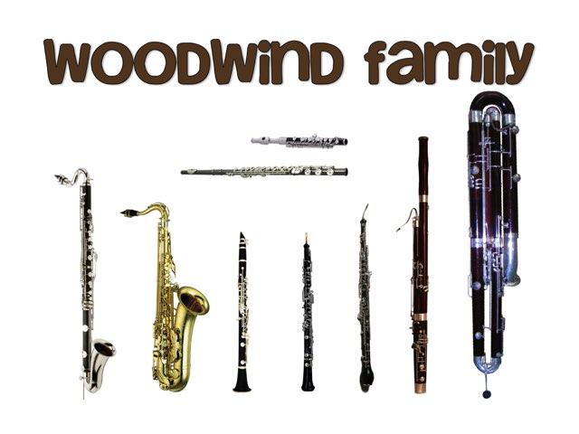 Woodwind Instruments by A. DePasquale