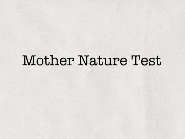 Y3 Mother Nature Game by Wil Baker