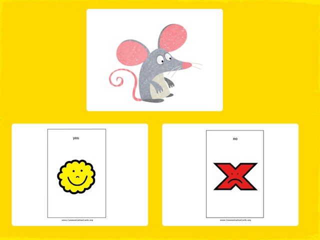 Yes No Questions  by Shae Rodgers Speech Pathologist