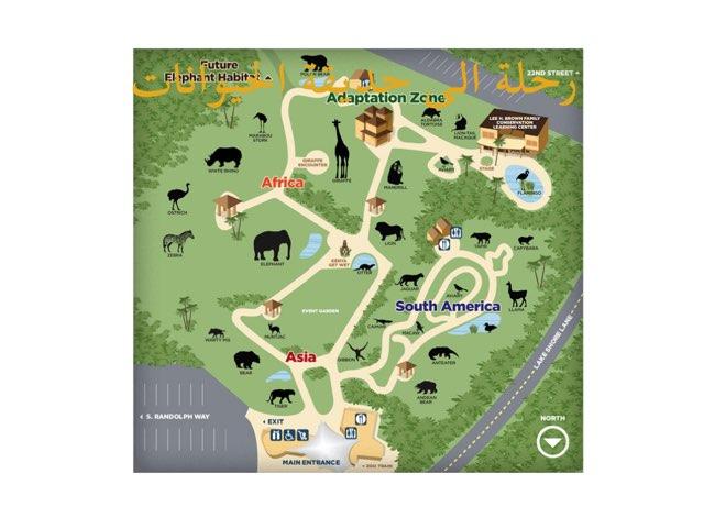 Zoo by Khaloob kawar