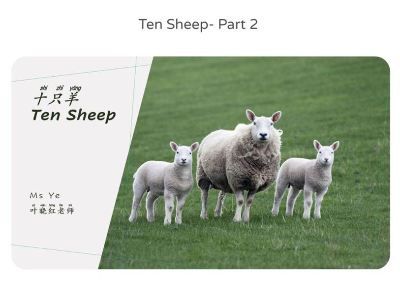 十只羊 10 Sheep - Part 1 by X H Ye