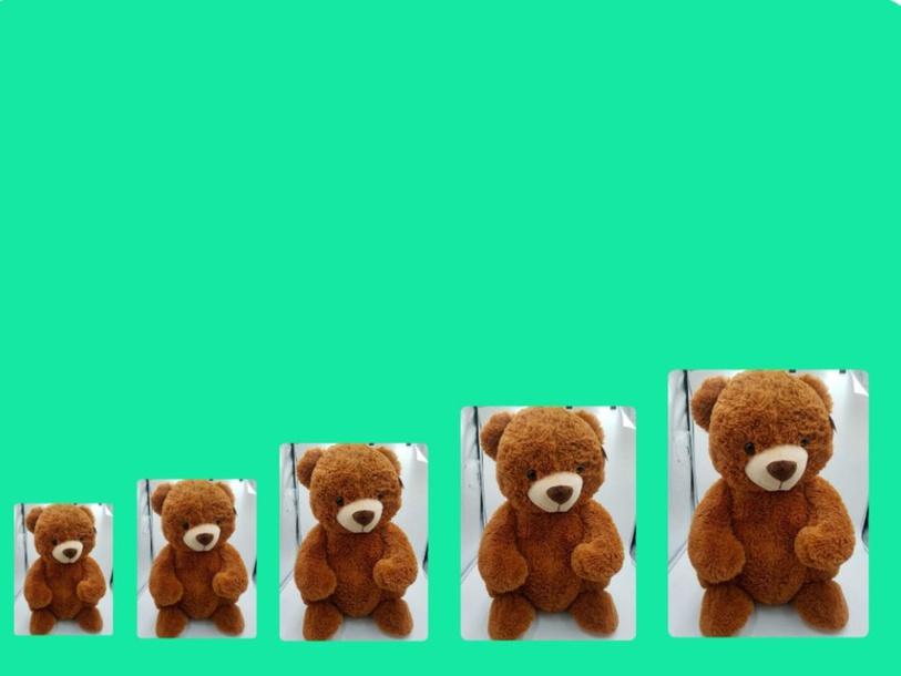דובים מ1-5 by אני סטודנטית לחינול מיוחד לגיל הרך