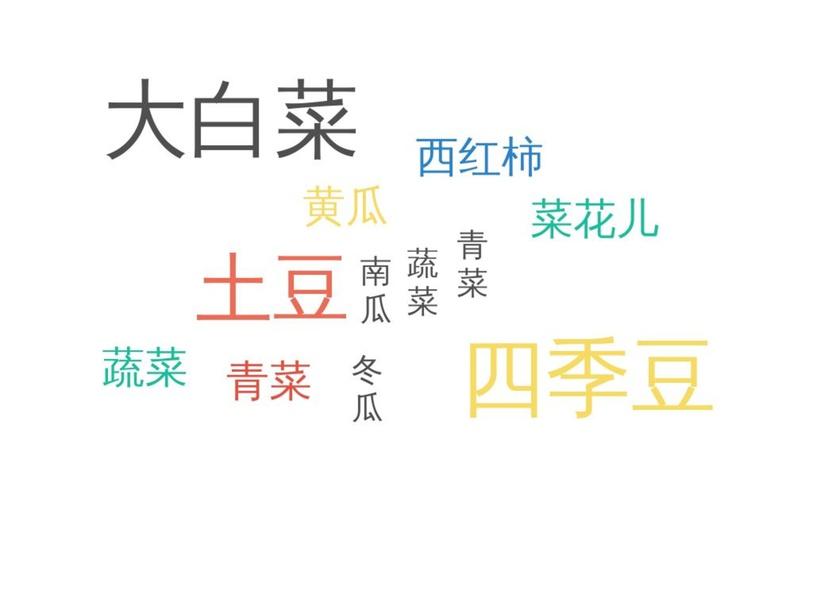 不同的蔬菜名字 by WANG Yuan