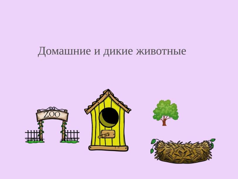 Животные by Nona Mshvidobadze