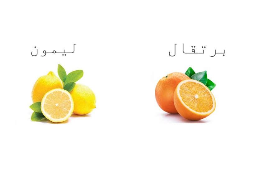 الحمضيات by Fadi Michael
