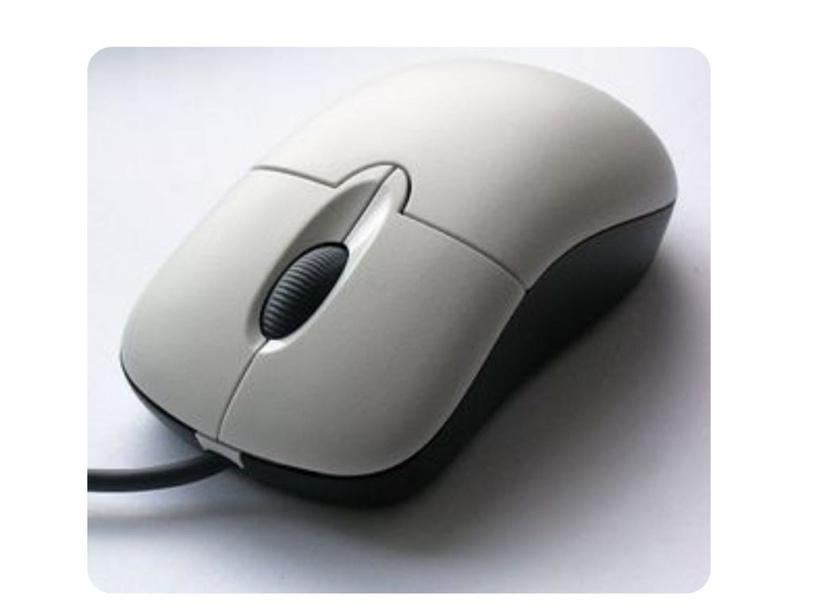 الفأرة by سمية الصقري