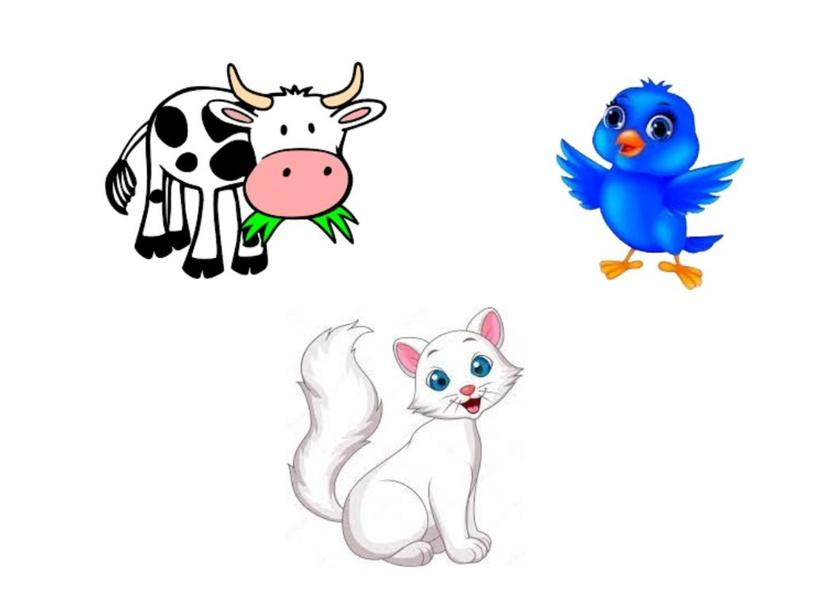 حيوانات by رقيه العبري