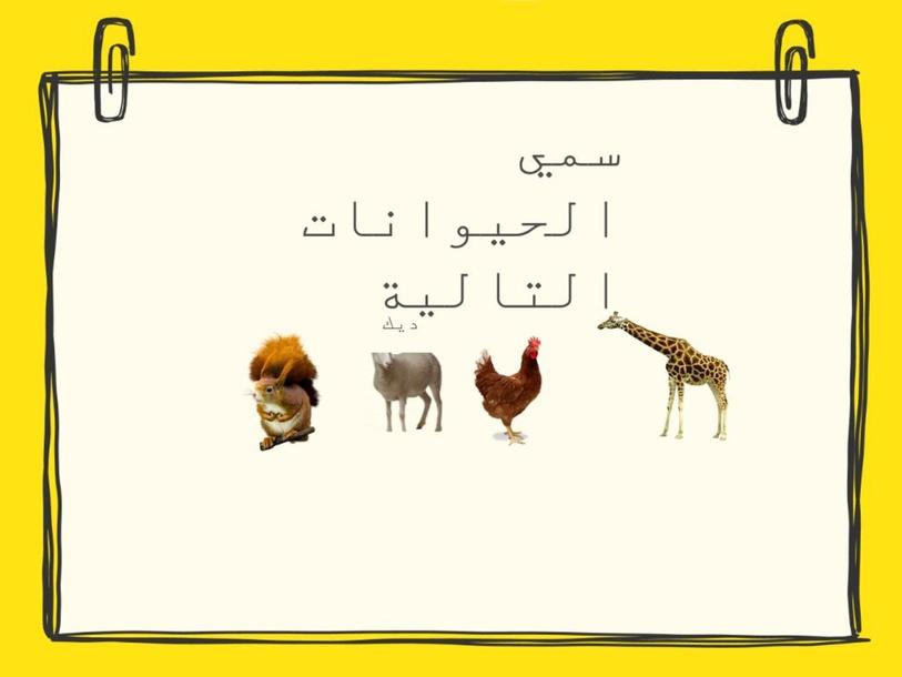 (Copy) by Lano Nawaf