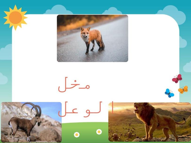 مخل الوعل by Fakreya Baniorabs