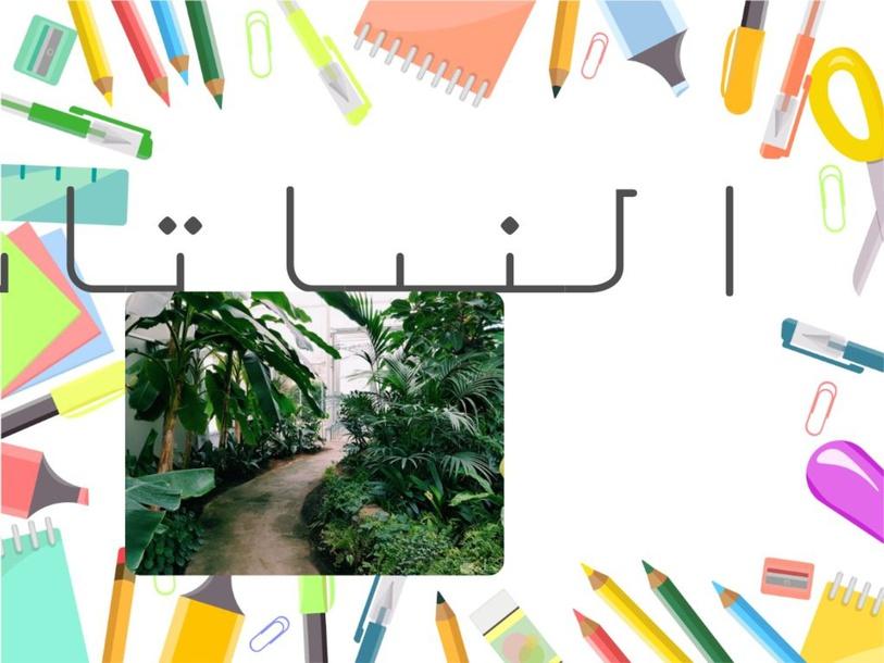 التجربة الاولى by hidaya issa