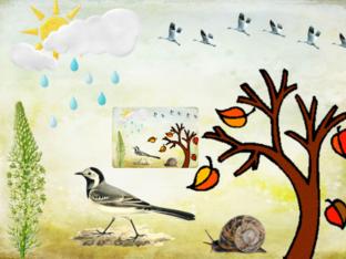 מאפייני הסתיו by Ganigar School