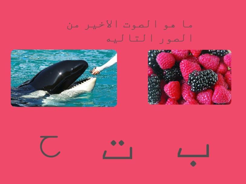 فعالية السجع by safa azbarqa