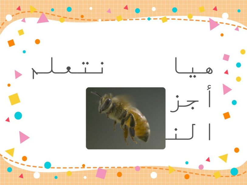 النحلة  by Ebtehal Alrasheed