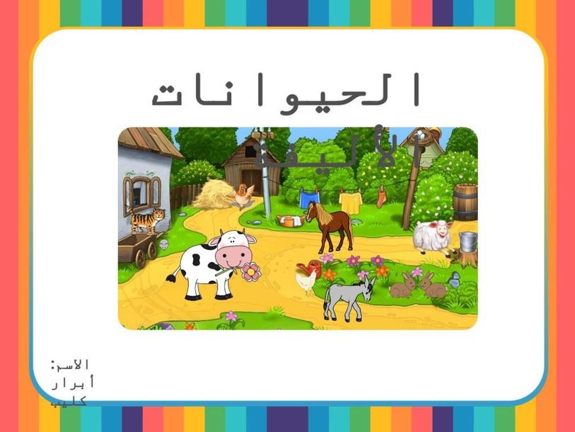 الحيوانات الأليفة by Abrar klaib