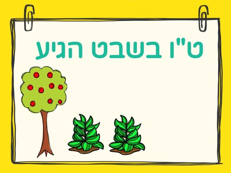 טו בשבט חידון by Haviva Nisim