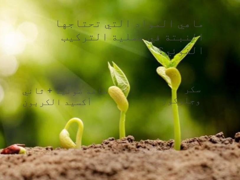 مراجعة أحياء الوحدة 5 by Rofidah Banabilah