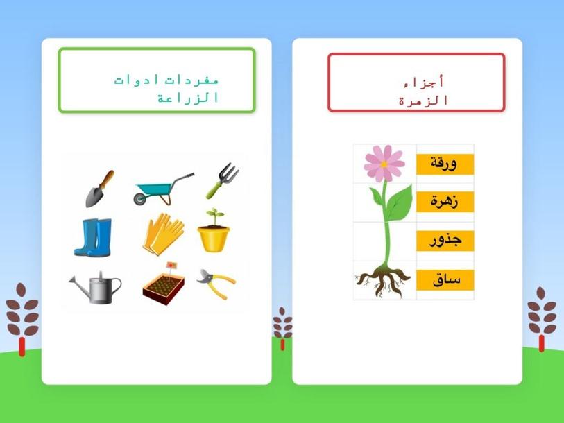 مفردات المزارع والنبتة by Bakhita Al Derei