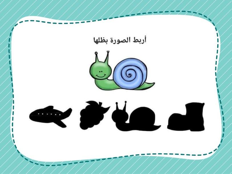 اربط الصورة بظلها by wafa zahalka
