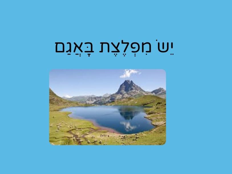 יש מפלצת באגם, פסקה 3 by Achia Bier