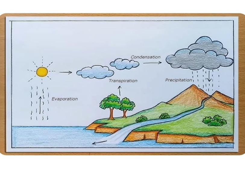 دورة المياه في الطبيعة by WAFFA ALKADYEM