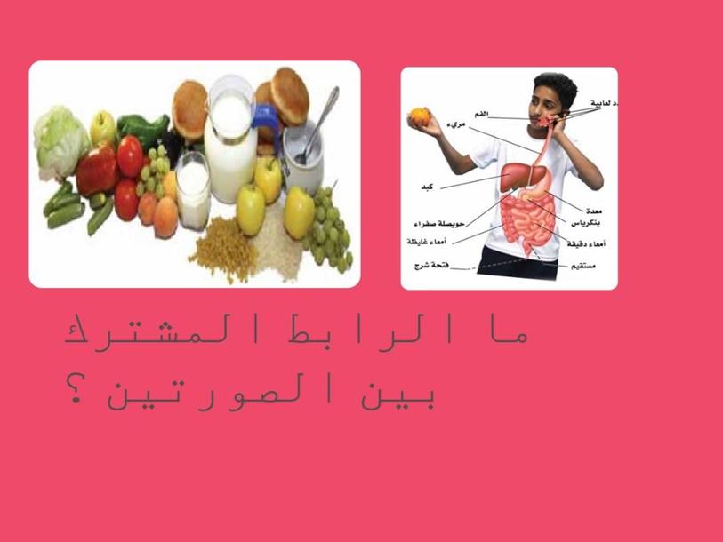 النشاط الأستهلالي   by sajeda alsari