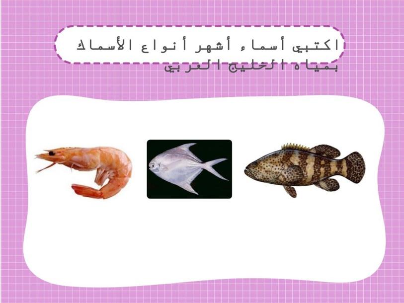 أسئلة مراجعة للثروة السمكية by جوجو العصفور
