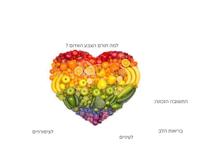חשיבות הצבעים של פירות וירקות by אבי יהונתן שחם