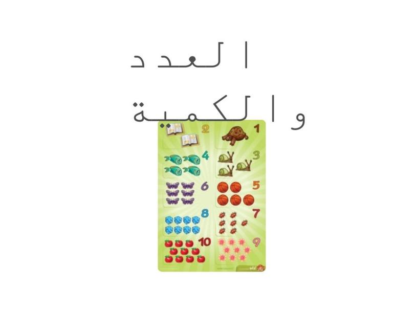 العدد والكمية وجدان ابو مطير by Mnal ابوعجاج