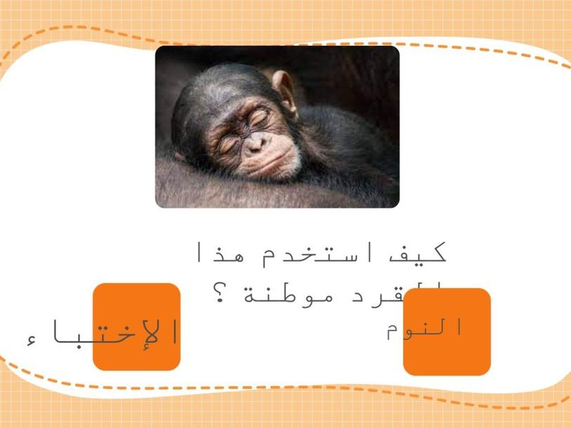 كيف تستخدم الحيوانات مواطنها ؟ by lamya shehri