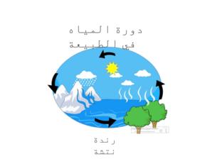 دورة المياه في الطبيعة by randa natsheh
