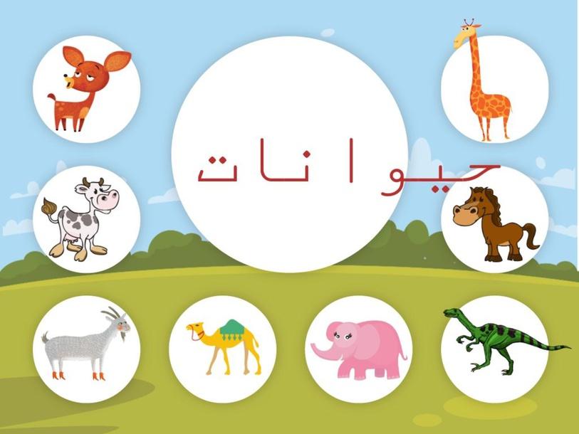 تصنيف مجموعات  by Samira Elbedour