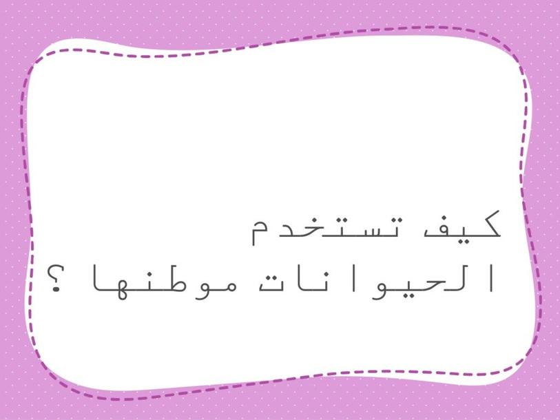 اجيبي عن التالي by lamya shehri