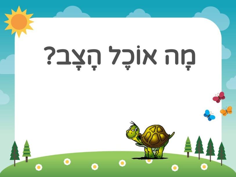 מָה אוֹכֵל הָצָב? by חן מרדכי