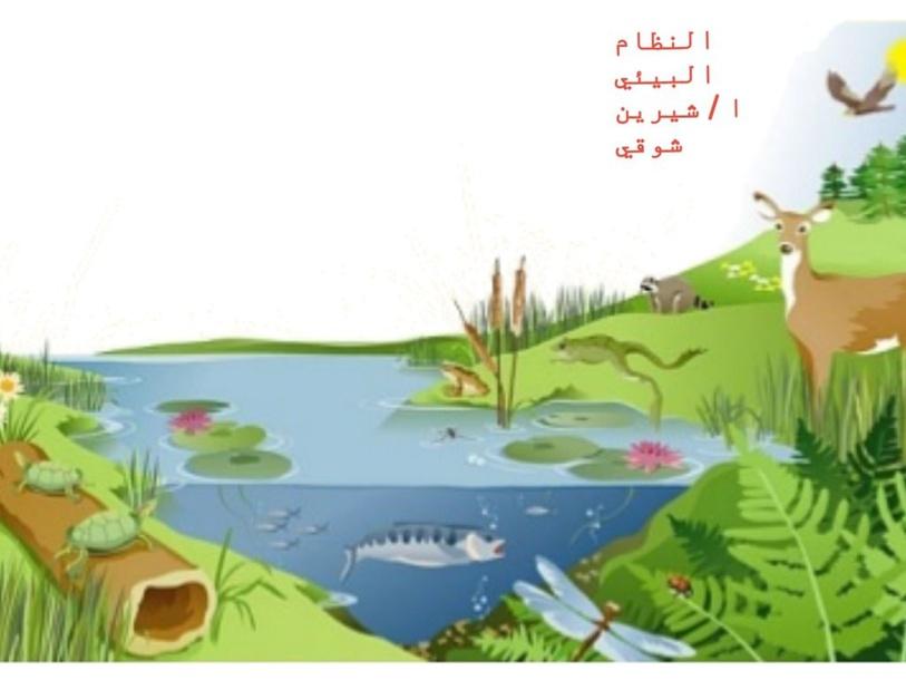 النظام البيئي by الله الحافظ