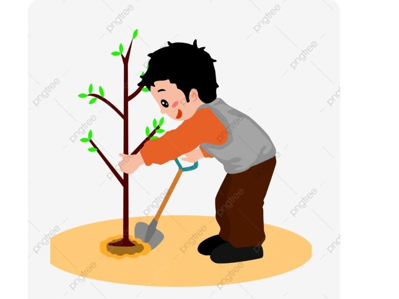غرس الشجرة by m.sh.28899