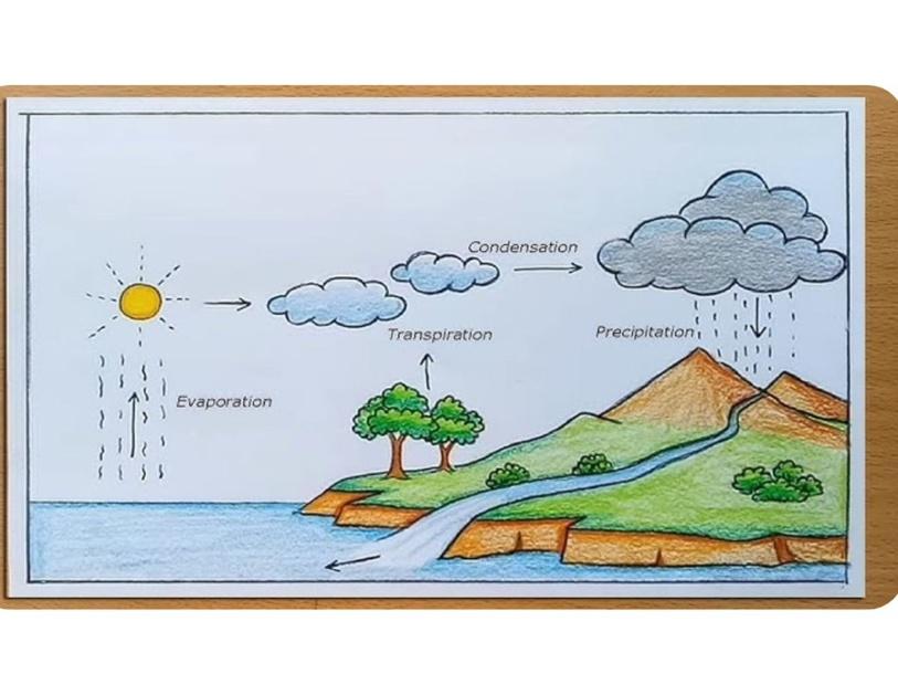 מחזור המים by שקמה דורון