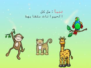 الحيوانات  by aleen abuakel