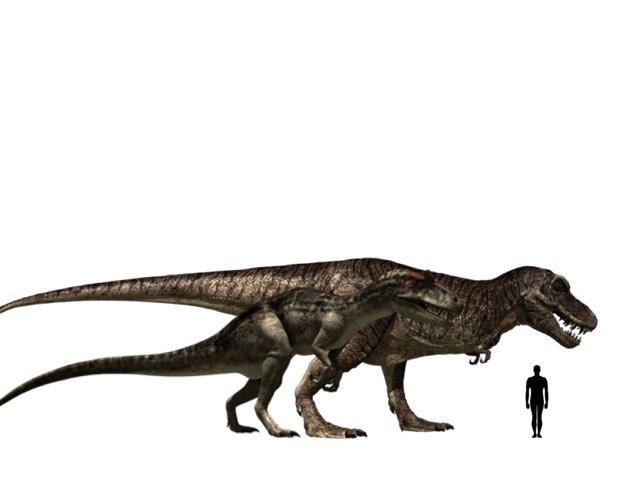 allosaurus bs trex by George awrahim