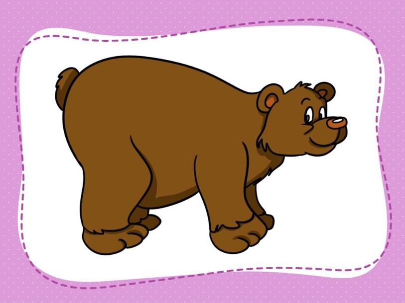 bear by Paula Armandi
