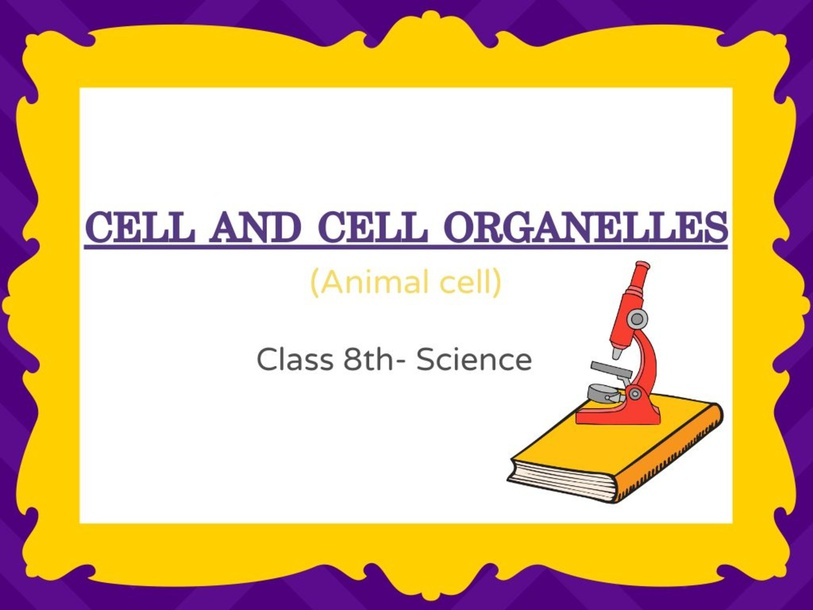 cell and cell organelles by Hafsa Ansari